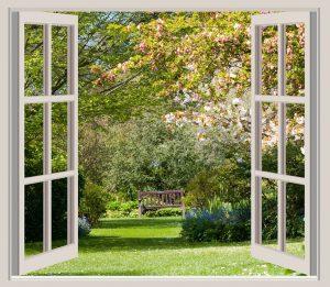 Photo de fenêtre ouverte sur jardin