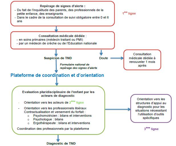 Schéma plateforme de coordination et d'orientation des troubles du neurodéveloppement