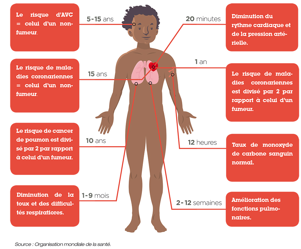 Schéma des bénéfices sur la santé de l'arrêt du tabac