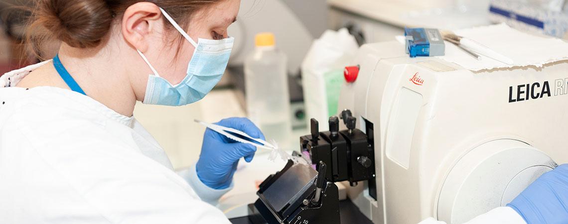 tumorothèque technicienne microtome-coupe-parafine